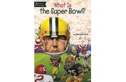 ?What Is The Super Bowl